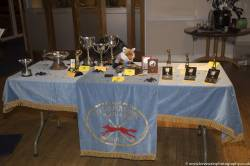 County Junior Girls Presentation Trophy Table