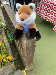Freddie the Fox keeping an eye on things!